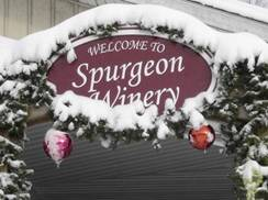 Image for Spurgeon Vineyards & Winery